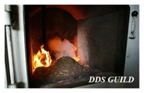 DDS-GUILD9